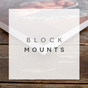 block mounts